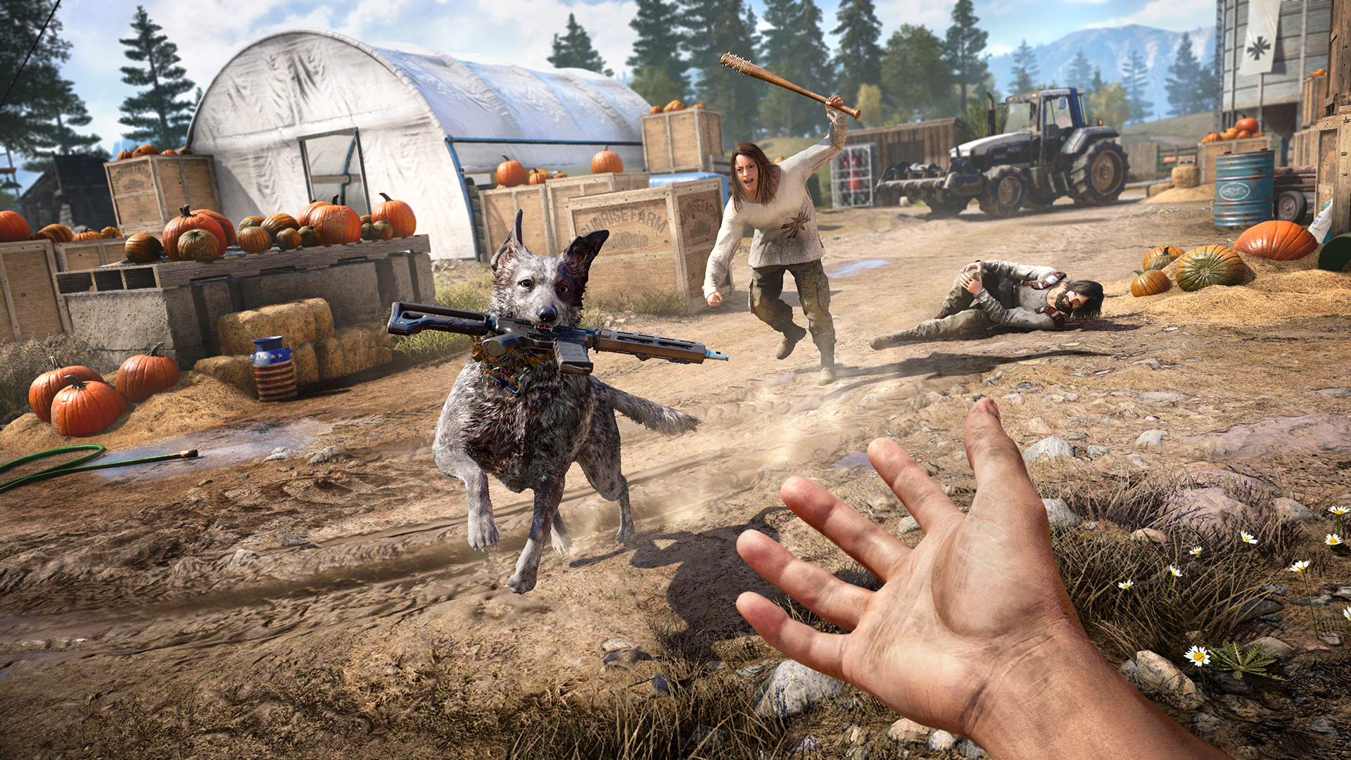 Far Cry 5 chien